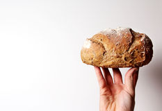 One Loaf Right Up Stock Images