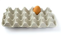 One lonely egg in gray carton egg tray isolated on white background. Last chance to eat. Assortment of food in single man fridge. stock image