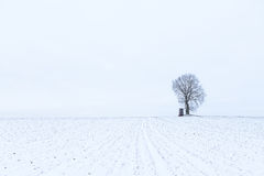 One lonely tree with a hunting lookout on a field with snow duri Royalty Free Stock Photos