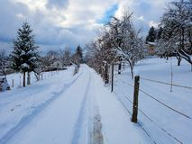 One long path in Wintertime stock images