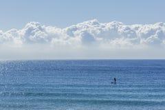 One man doing paddle surf Stock Image