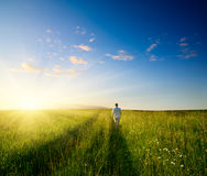 One man and field of summer grass Royalty Free Stock Photography