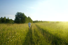 One man and field of summer grass Royalty Free Stock Images