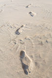 One man footstep Stock Photography
