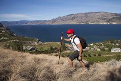 One Man Hiking With Lakeview Background stock images