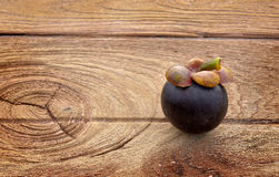 One mangosteen on wooden plate. With the space for text in outdoor sunlight Stock Photography