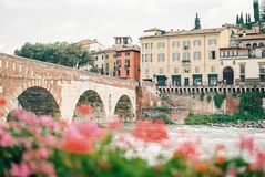 One of the many bridges in Verona Italy. Colorful cityscape of Verona Italy. With a bridge, some beautiful historical buildings and flowers blurry in the front stock photos