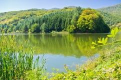 One of many lakes at Semenic national park Stock Photo