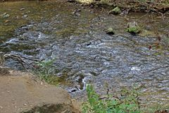 One of the many streams that run through the Smokey Mountain National Park stock photography