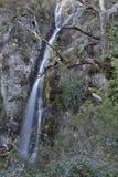 Peneda Geres waterfall royalty free stock image