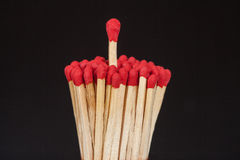 One matchstick standing over from the group, Stock Photos