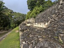 Mayan archaeological monuments of Xunantunich, Belize. One Mayan archaeological monuments of Xunantunich, Belize royalty free stock photo
