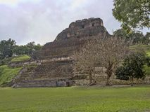 Mayan archaeological monuments of Xunantunich, Belize. One Mayan archaeological monuments of Xunantunich, Belize royalty free stock images