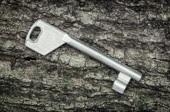 One metal key Royalty Free Stock Photography