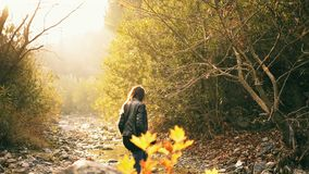 One Middle eastern woman posing with a dry leaf in fall season and in the nature. stock footage