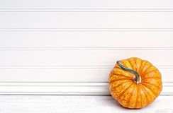 One Mini Pumpkin leaning against White Clapboard Wall. One mini pumpkin in lower right corner, leaning against white beadboard wall with blank area for copy Stock Photo