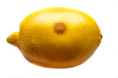 One moldy lemon Stock Photo