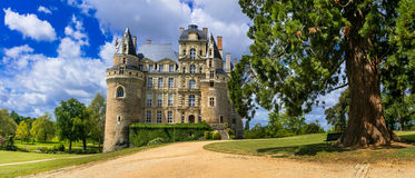 One of the most beautiful and mysterious castles of France - Cha Royalty Free Stock Images