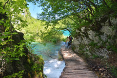 One of the most beautiful places in the world Plitvice - Croatia Stock Photography