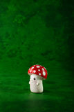 One mushroom Stock Image