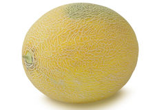 One Muskmelon isolated on white background Stock Photography