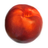 One nectarine isolated on white background Royalty Free Stock Photography