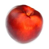 One nectarine isolated on white background Stock Photos