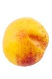 One nectarine Royalty Free Stock Photo