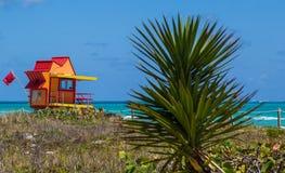 Miami Beach dunescape Stock Image