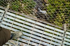 No ground under your feeds. One of the newest and longest suspension bridges in Pokhara. This spans across the Seti River royalty free stock photography