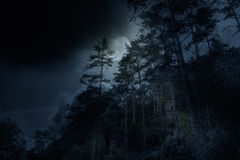 One night in the mountains royalty free stock images