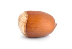 One nut Royalty Free Stock Images