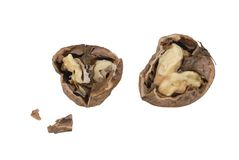 One nut open Stock Images