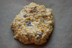 One oat cookie with the raisins before bakery. Homemade food. Grey background. Cooking process. royalty free stock image