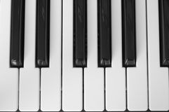 One octave. Close-up photo of one piano octave Stock Photos
