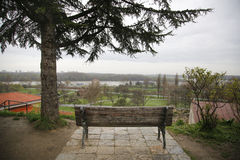One old bench with view on city and Evergreen tree Royalty Free Stock Photos