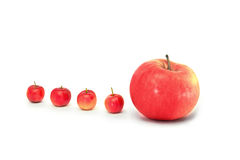 One by one red apples  on white Stock Photography