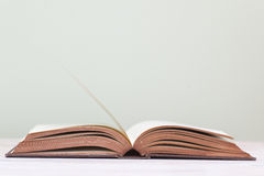 One open book Royalty Free Stock Image