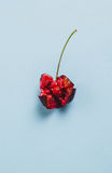 One opened ripe cherry on blue background Stock Photography