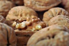 One opened walnut Stock Image