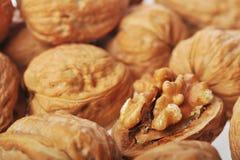 One opened walnut Stock Photography