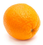 One orange Stock Photo
