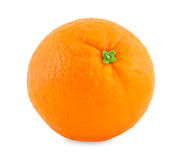 One orange. Stock Photo
