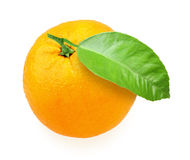 Orange-fruit with green leaf Stock Photography