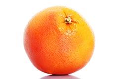 One orange fruit isolated. Royalty Free Stock Photo
