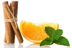 One orange fruit segment Stock Photography