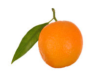 One orange with leaf Stock Photo