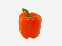 One orange pepper Stock Images