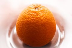 One orange on a plate royalty free stock photos