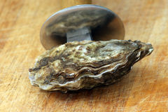 One organic oyster and a knife to open Royalty Free Stock Photo
